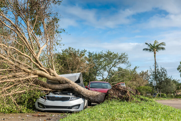 hurricane-michael-insurance-claims-lawyer.jpg